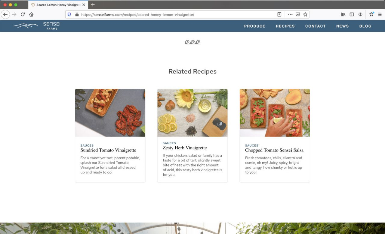 Related Recipes